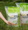 Lucky Hooves Strohpellets Sack